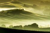 Morgennebel in der landschaft toskana — Stockfoto