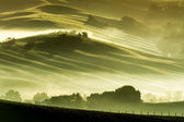 Brume matinale dans la campagne toscane — Photo