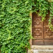 Ancient building with wooden door and ivy — Stock Photo