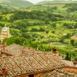 Stock Photo: Green valley and red roofs in Volterra, Italy