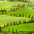 Winding road to agritourism in Italy on the hill — Stock Photo