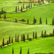 Stock Photo: Winding road to agritourism in Italy on hill, Tuscany