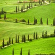 Winding road to agritourism in Italy on the hill, Tuscany — Stock Photo #26586181
