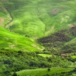Green valley between the hills in Tuscany — Stock Photo