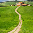 Country road leading to agrotourism — Stock Photo