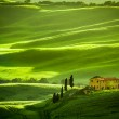 Green fields and meadows with agrotourism — Stock Photo #26587635