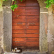 Two cats basking in the sun at the door — Stock Photo
