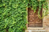 Edificio antiguo con puerta de madera y hiedra — Foto de Stock