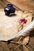 Eski sayfa üzerinde yatan bir tüy closeup — Stok fotoğraf