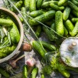 Pickling cucumbers in clay pot — Stock Photo #29541621