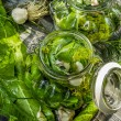 Fresh pickling cucumbers in countryside — Stock Photo #29541987
