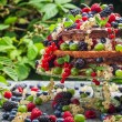 Stock Photo: Cake wild fresh berry fruits in forest