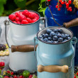 Stock Photo: Fresh berry fruits in churn