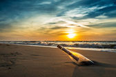 Message in a bottle on a beach against the setting sun — Stock Photo