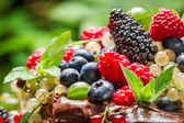 Fresh wild berry fruits — Stock Photo