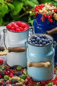 Fresh berry fruits in churn — Stock Photo