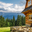 Rural cottage in the mountains — Stock Photo