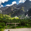 Rocky Mountains in summer — Stock Photo