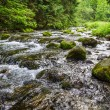 Mountain stream flowing between mossy stones — Stock Photo
