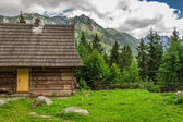 Wooden forester cottage in the foothills — Stock Photo
