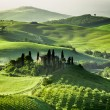 Misty valley in Tuscany at sunrise — Stock Photo