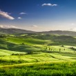 Rising fog in the valley at sunset, Tuscany — Stock Photo