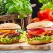 Two homemade burgers made from fresh vegetables — Foto Stock