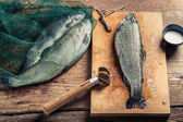 Freshly caught fish for dinner — Stockfoto