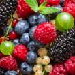 Closeup of fresh berry fruits — Stock Photo