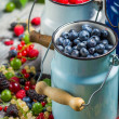 Closeup of fresh berry fruits in churn — Stock Photo
