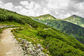 Panoramic view of mountain peaks from the trail — Stock Photo