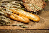 Baguettes and a basket full of grain with ears — Stock Photo