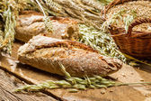Baguette baked with wholemeal flour — Stock Photo