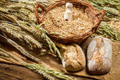 Whole grains buns and a basket with cereals — Stock Photo