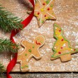 Closeup of Gingerbread cookies for Christmas — Stock Photo #32096945