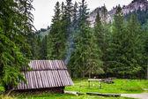 Góry wędzarni w lesie — Zdjęcie stockowe