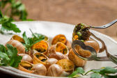 Closeup of eating the fried snails with garlic butter — Stock Photo