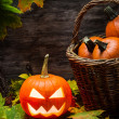 Halloween pumpkin in autumn leaves — Stock Photo