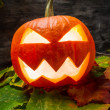 Halloween pumpkin on autumn leaves — Stockfoto