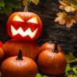 Halloween pumpkins with autumn leaves — Stock fotografie