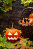 Calabaza de halloween en hojas de otoño — Foto de Stock