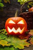 Calabaza en hojas brillantes de halloween — Foto de Stock