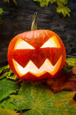 Halloween pumpkin on autumn leaves — Stock Photo