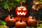Jack o lantern on pumpkins pile — Stock Photo