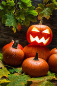Pumpkins with autumn leaves — Stock Photo