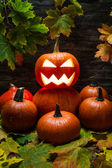 Pumpkins pile with autumn leaves — Stock Photo