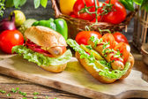 Closeup of homemade hot dog with a lot of vegetables — Stock Photo