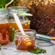 Honey in a jar and Honeycomb on the background of linden trees — Stock Photo