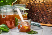 Honey in a jar and Honeycomb on the background of linden trees — Foto de Stock