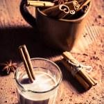 Closeup of cocoa milk with cinnamon bark — Stock Photo #35381233